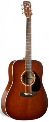ART & LUTHERIE Folk Cedar Dreadnought